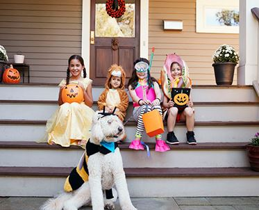 Kids and dog dressed up for Halloween